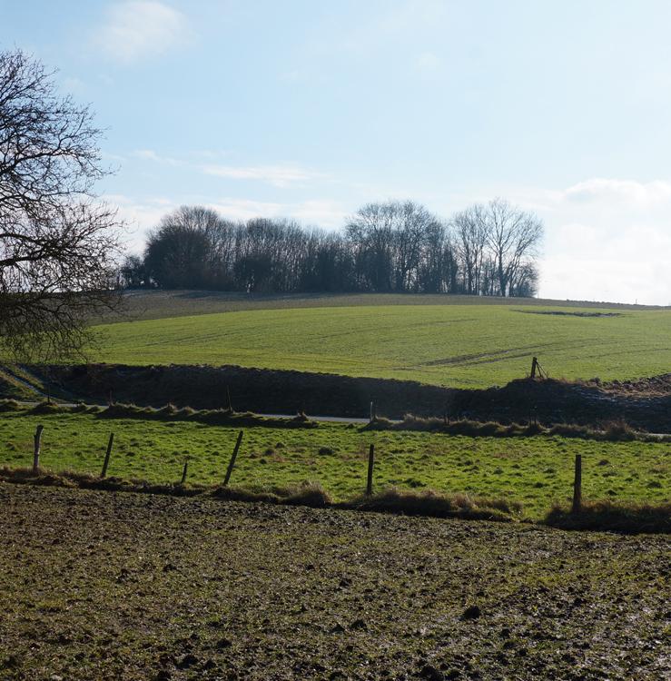 Hawthorn_Ridge